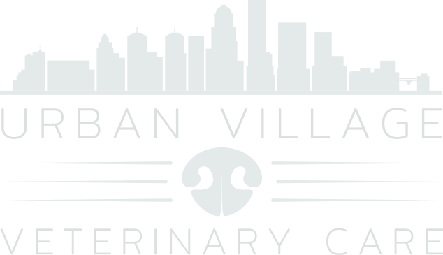 Urban Village Veterinary Care