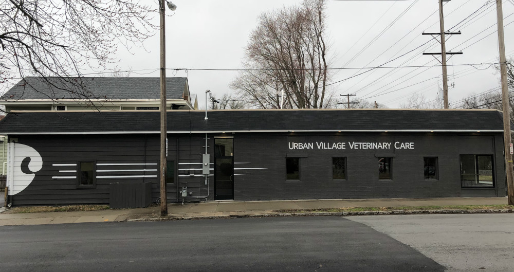 Veterinarian In Louisville Ky Urban Village Veterinary Care